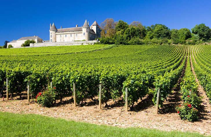 Campsites in Burgundy, France