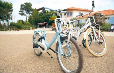 Camping Le Pin Parasol Cycling