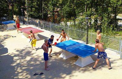 Campsite Domaine le Pommier Sport Facilities