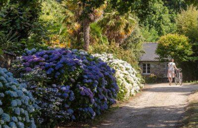 Domaine L'Orangerie de Lanniron Cycle Hire