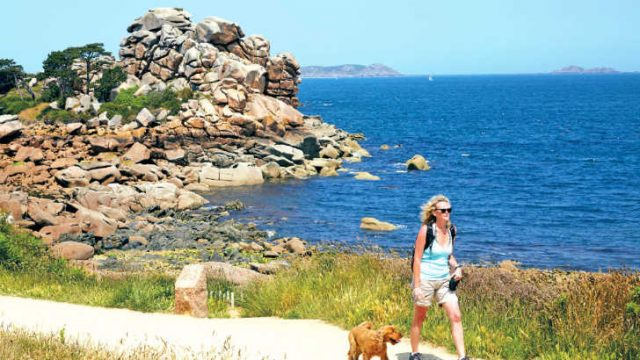 Dog friendly campsites in France