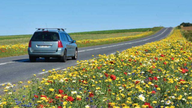 Speeding in France