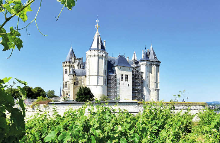 Campsites in Loire, France